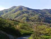Castel Guerrino dal Corniolo (1) - Copia