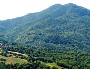 15-Montae Castel Guerrino versante nord